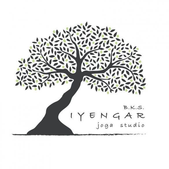 Iyengar joga studio